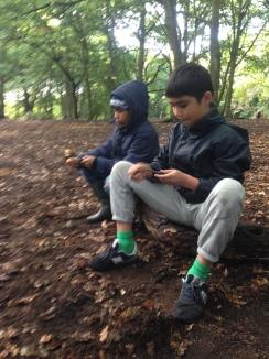 children in woodland fire making